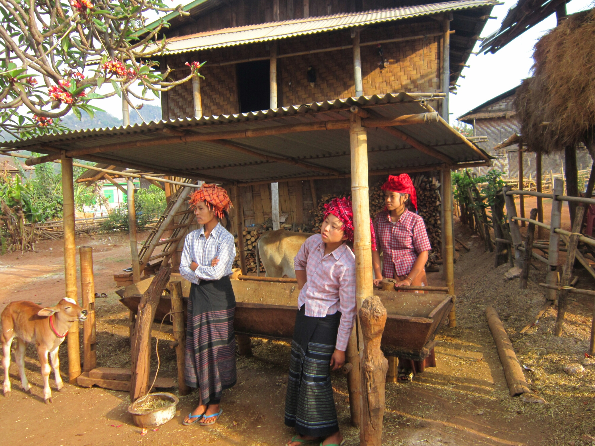 The people of Mynamr - Women in the village of village of Pat tu Bauk