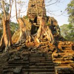 Overgrown temple in Angkor Thom in the Temples Of Angkor