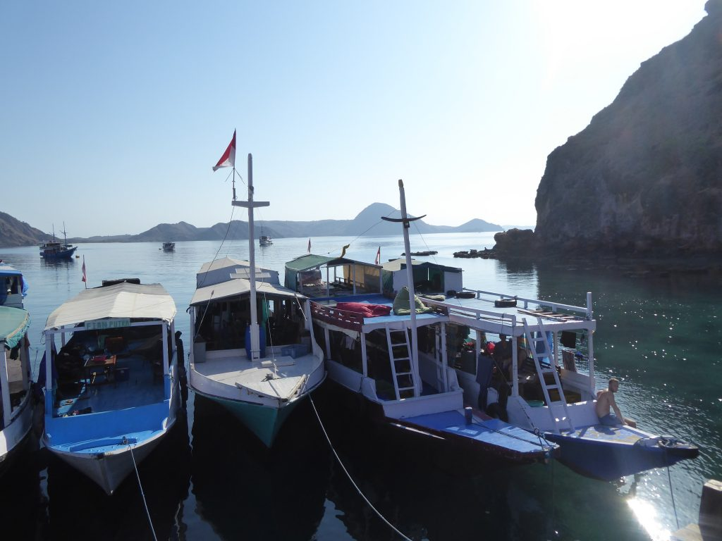 Komodo Islands Travel guide - The standard boars docked at Padar island. 4 boats in a row
