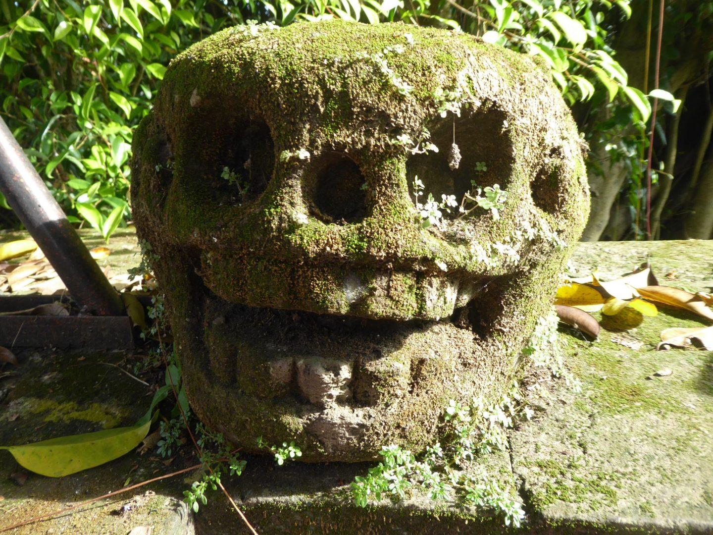 Balinese Temples - Skull in Pura Dalem