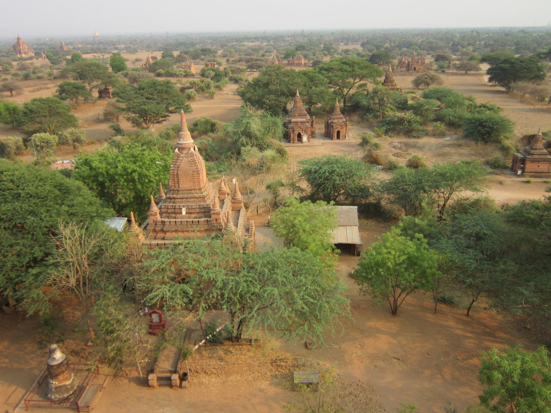 A view across Bagan, showing temples dotted around the dry landscape with tree's spread around too.