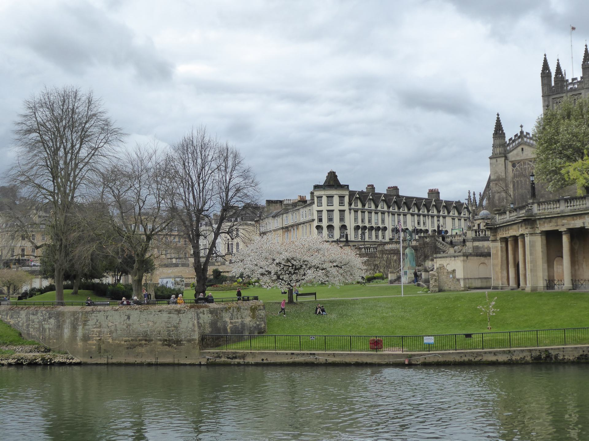 A view across water of part of Parade gardens. showing grass and tree's, with Bath Abbey and other building sin the background.