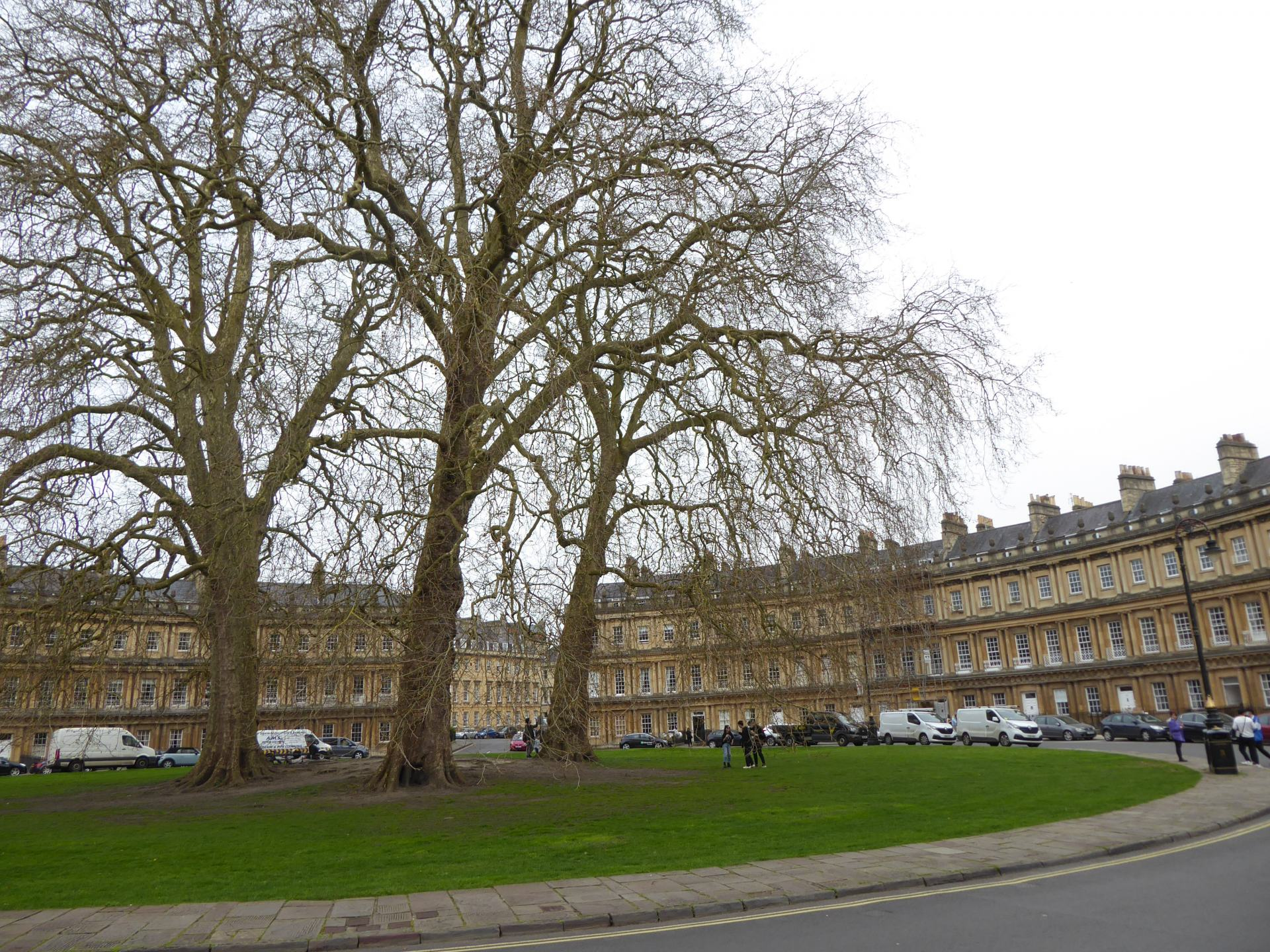View of the green area in the middle of the Circus, showing 3 leafless tree's with some of the buildings in the background.
